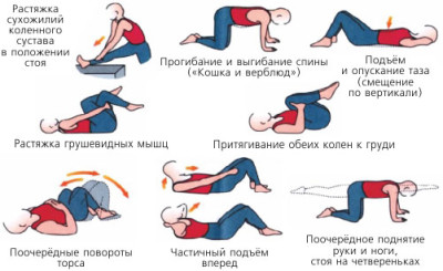 Упражнение при сколиоза для детей подростков