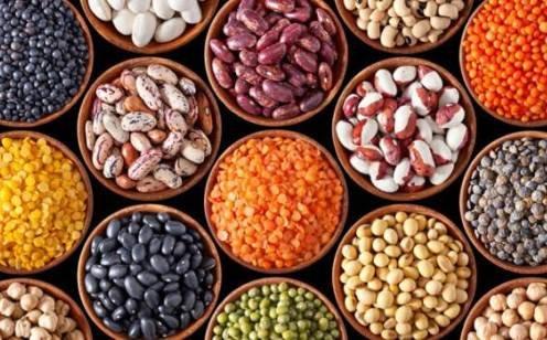 Где брать белок вегетарианцам