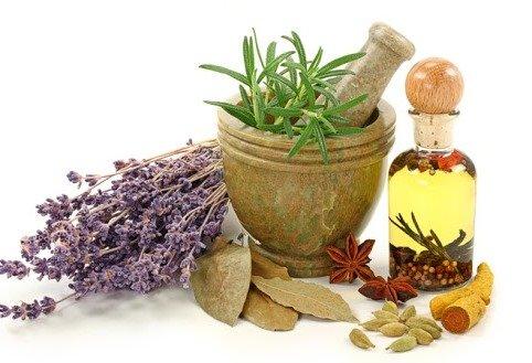 Народные средства для хорошего пищеварения – травы и приправы